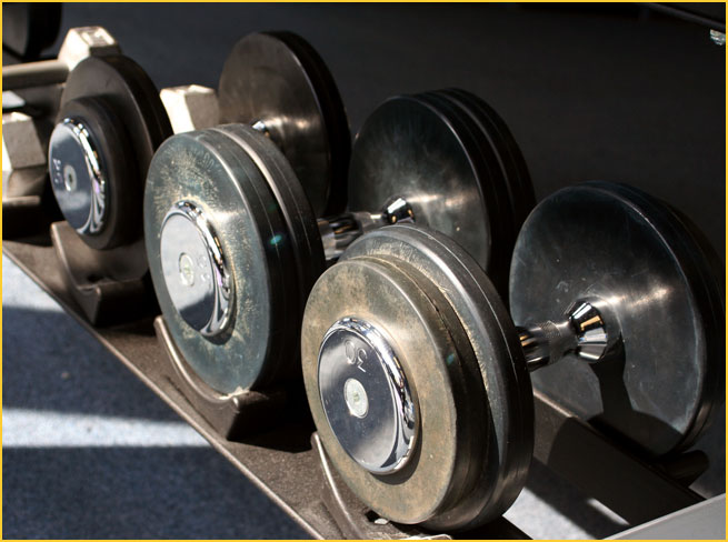 Freeweight DumbBells